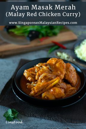 red chicken curry in a black bowl photo