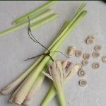 how to prepare lemongrass